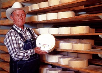 Mennonite cheese