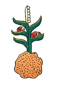 """Atocpan = """"On fertile soil"""""""
