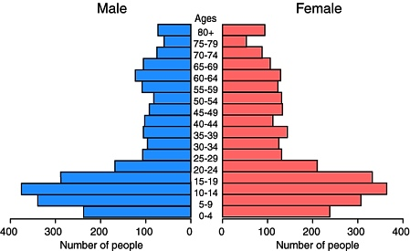Population pyramid for Piaxtla, 2000.