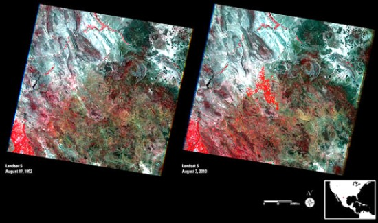 Landsat images of Chihuahua