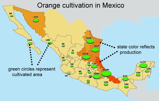 Areas where oranges are grown