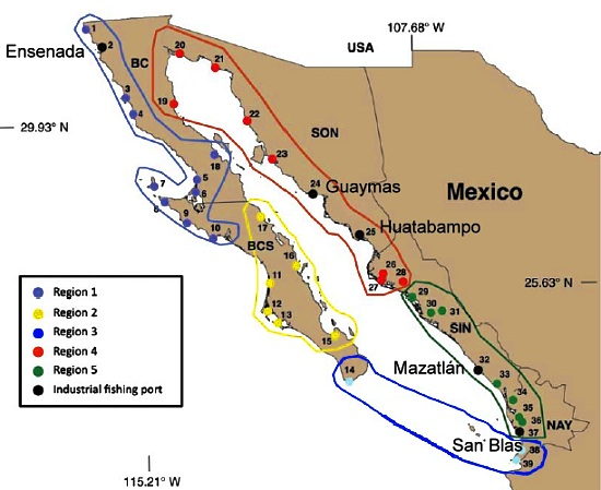 Proposed fishing regions in NW Mexico