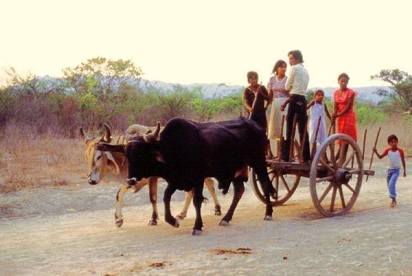 "Local ""bus"" to the train station, Tehuantepec, 1985"