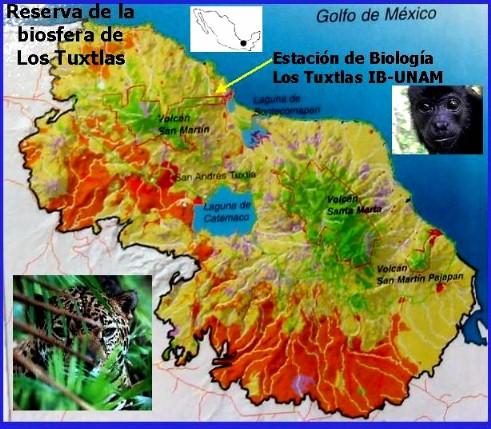 Tuxtlas biosphere reserve