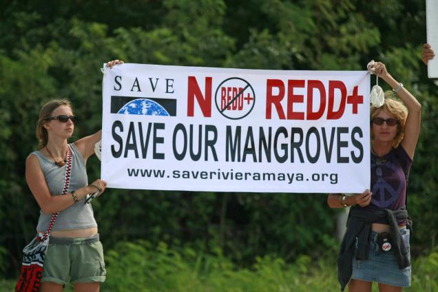 Opposition to mangrove destructon