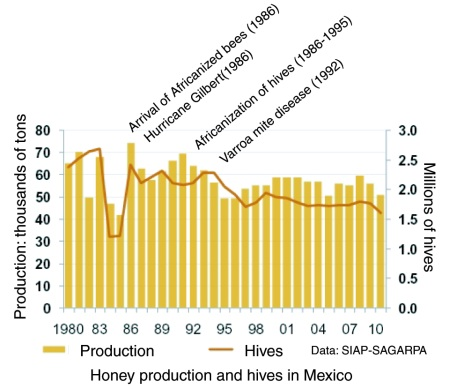 Graph Of Honey Production In Mexico
