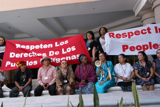 Protests in support of indigenous rights, Cancún climate summit