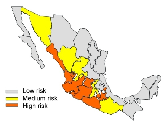 Scorpion risk in Mexico