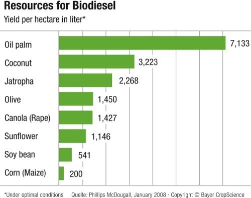 Sources of biodiesel.