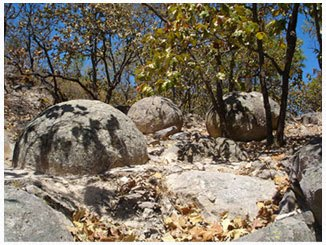 picture of piedras bola