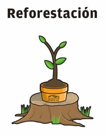 Poster prepared by Reforestamos México A.C.