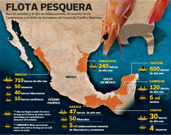 Mexico's fishing fleet