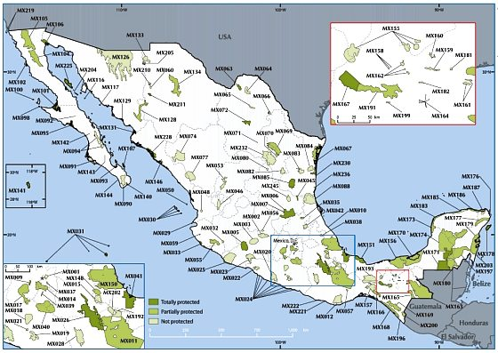 Important Bird Areas in Mexico [Birdlife.org]