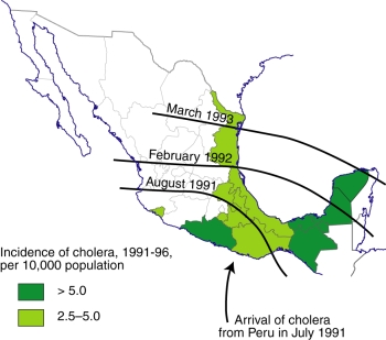The spread of cholera in Mexico, 1991-1996