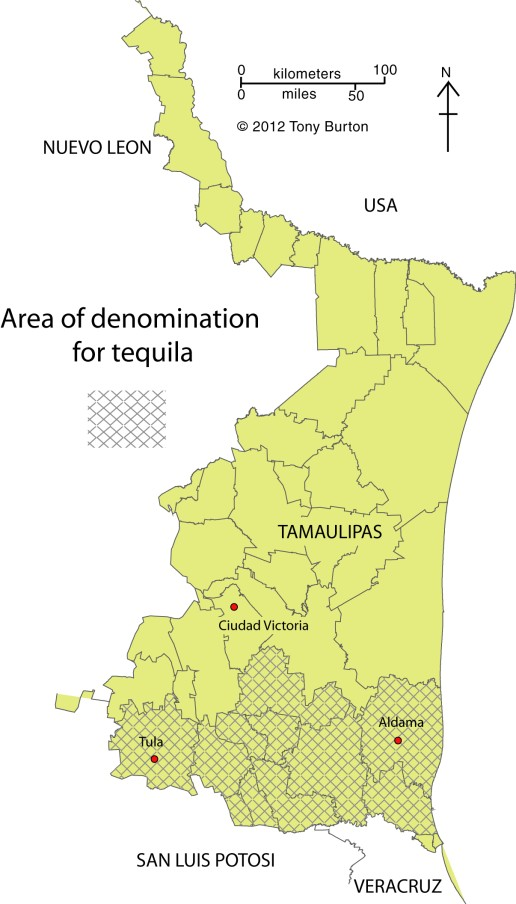 Tequila growing area in Tamaulipas.