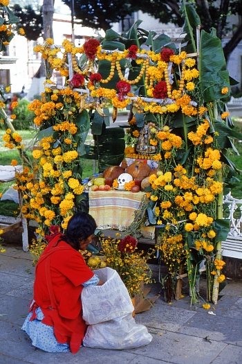 Finishing touches being put to a Day of the Dead altar, Oaxaca City. Photo: Tony Burton; all rights reserved.