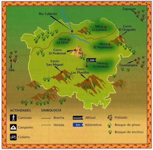 The Primavera Forest. Credit: Semarnat, 2003