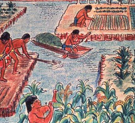 Artist's representation of chinampa farming