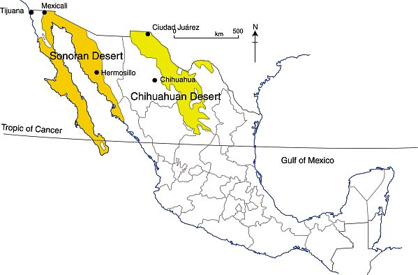 How Similar Are Mexicos Two Major Deserts The Sonoran Desert And - Sonoran desert on us map