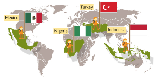 The four MINT countries
