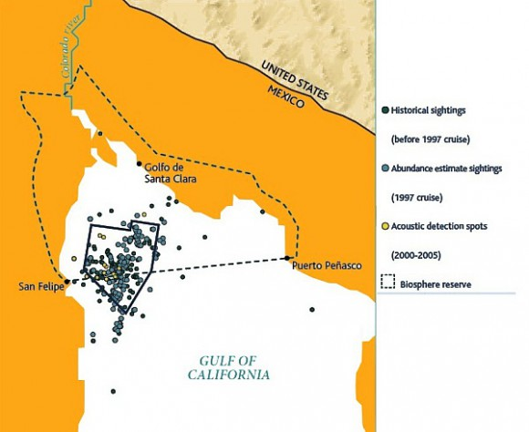Map of sightings and acoustic detection spots. Adapted from North American Conservation Action Plan for the vaquita