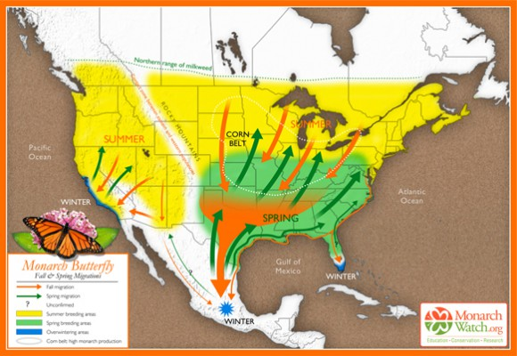 Based on original map design created by Paul Mirocha (paulmirocha.com) for Monarch Watch.