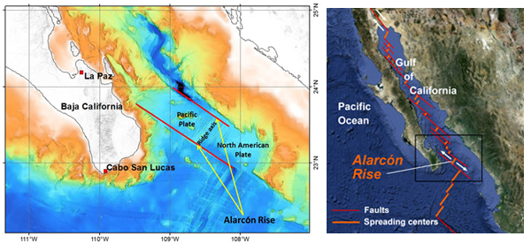 The Alarcón Rise is a 31-mile-long (50 kilometer) spreading center at the mouth of the Gulf of California. Along ocean spreading ridges like the Alarcón Rise, the seafloor is splitting apart as lava wells up from underneath. Credit: (c) 2012 MBARI