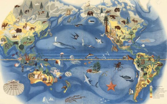 Covarrubias Mural of the Pacific