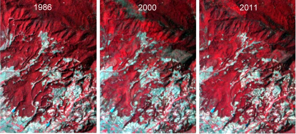 Satellite images of Chincua reserve, 1986, 2000 and 2011.