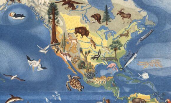 covarrubias-flora-fauna-north-america-sm